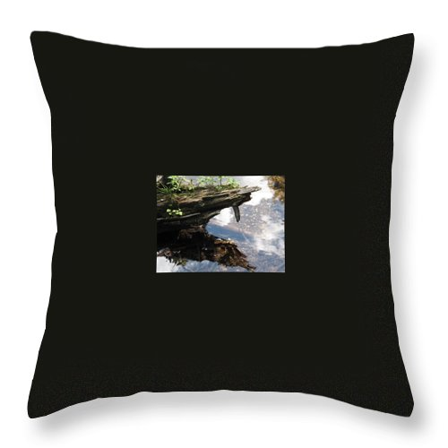 Wood Throw Pillow featuring the photograph Reflection by Michele Nelson