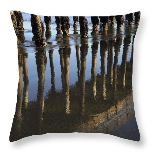 Avila Pier Throw Pillow featuring the photograph Reflections Avila Beach California by Bob Christopher