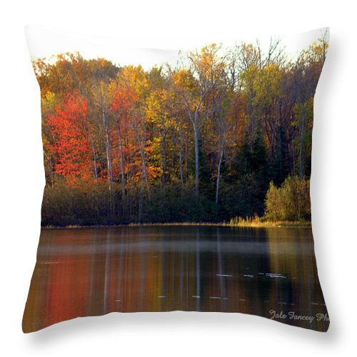Photography Throw Pillow featuring the photograph Reflections Of Fall by Jale Fancey