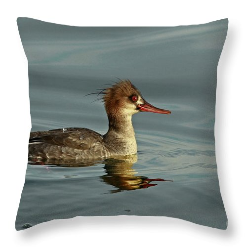 Art Collectors Throw Pillow featuring the photograph Reflections Of The Great Masked Wonder by Inspired Nature Photography Fine Art Photography