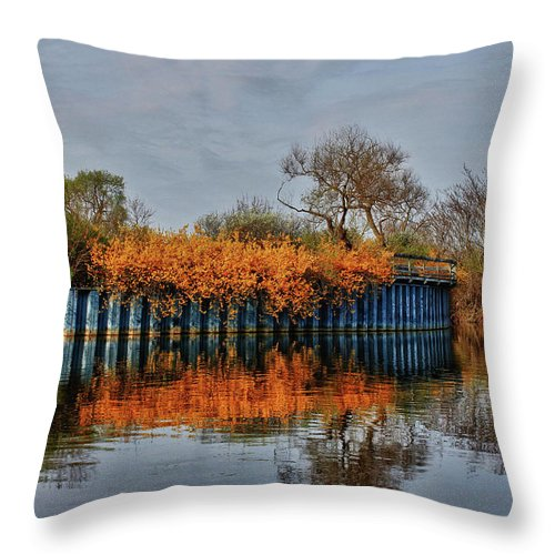 Reflections Throw Pillow featuring the photograph Reflections On Blue by Rachel Cohen