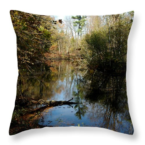 Usa Throw Pillow featuring the photograph Reflective River Thoughts by LeeAnn McLaneGoetz McLaneGoetzStudioLLCcom