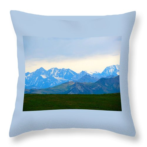 Alaska Throw Pillow featuring the photograph Relentless Beauty by Michael Anthony