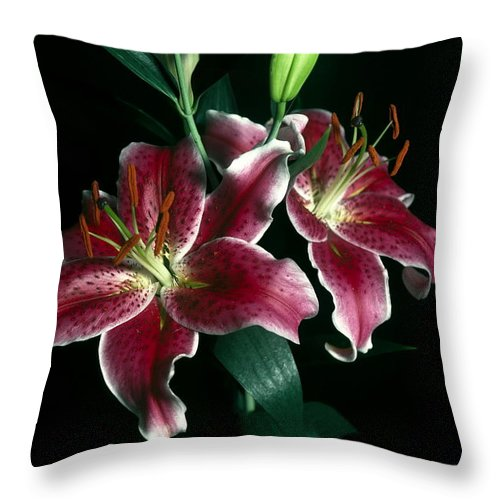 Reuben Lillies Close-up Throw Pillow featuring the photograph Reuben Lillies by Sally Weigand