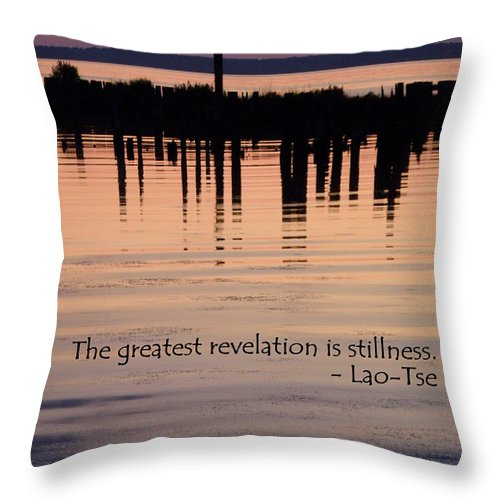Stillness Throw Pillow featuring the photograph Revelation by Lainie Wrightson