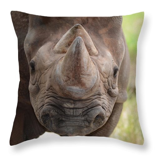 Maggy Throw Pillow featuring the photograph Rhino by Maggy Marsh