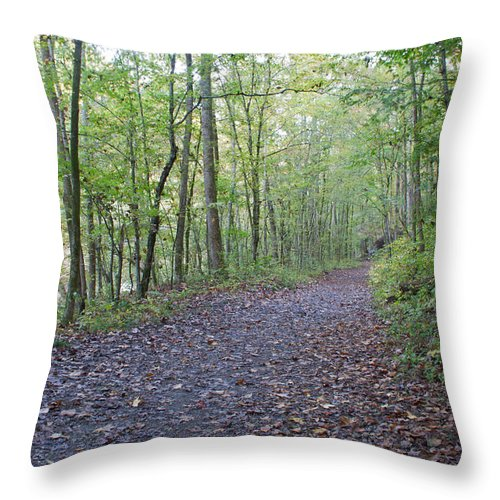 Trail Throw Pillow featuring the photograph Richland Mine Trail by David Troxel