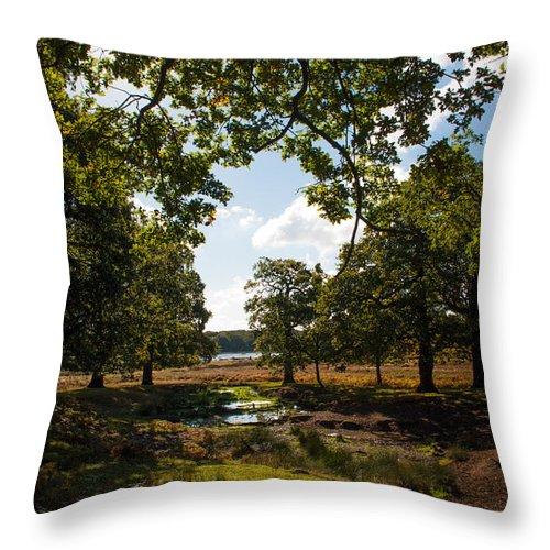 Autumn Throw Pillow featuring the photograph Richmond Park by Lenny Carter