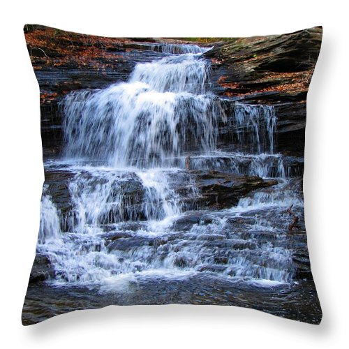 Ricketts Glen Throw Pillow featuring the photograph Ricketts Glen Waterfall 4075 by David Dehner