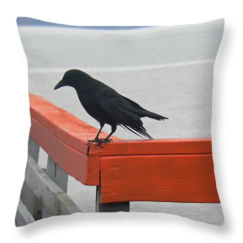 Crow Throw Pillow featuring the photograph River Crow by Pamela Patch