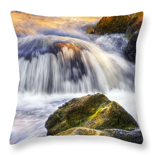 Water Throw Pillow featuring the photograph River Flows 03 by Svetlana Sewell