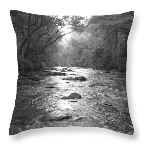 River Throw Pillow featuring the photograph River Gaze by Ginger Adams