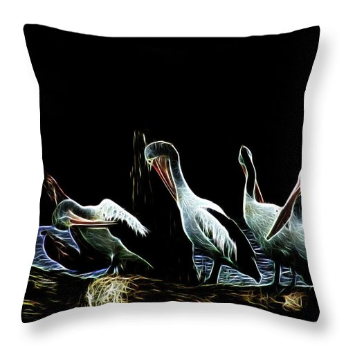 River Murray Pelicans Throw Pillow featuring the photograph River Murray Pelicans by Douglas Barnard