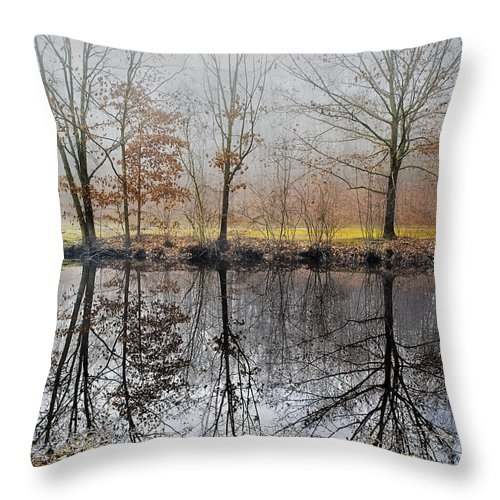 Landscape Throw Pillow featuring the photograph River Reflections by Fran Gallogly