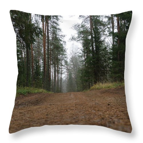 Autumn Throw Pillow featuring the photograph Road In A Pine Grove by Michael Goyberg