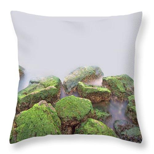 Staten Island Throw Pillow featuring the photograph Rock Bottom by Evelina Kremsdorf