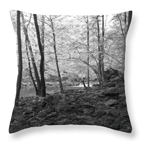 Rock Throw Pillow featuring the photograph Rocky Road by David Troxel