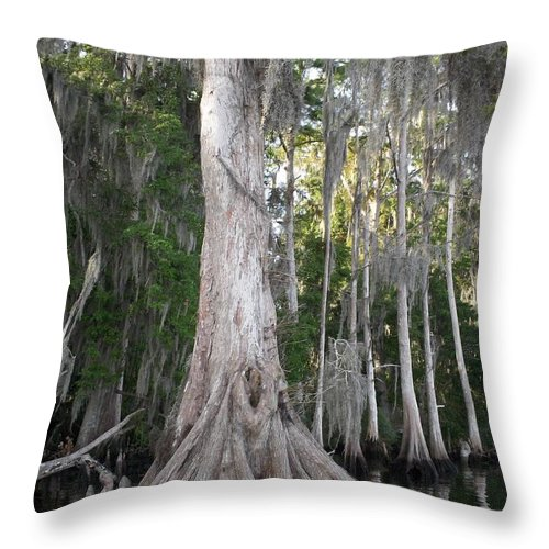 Roots Throw Pillow featuring the photograph Root Work by Tiffney Heaning