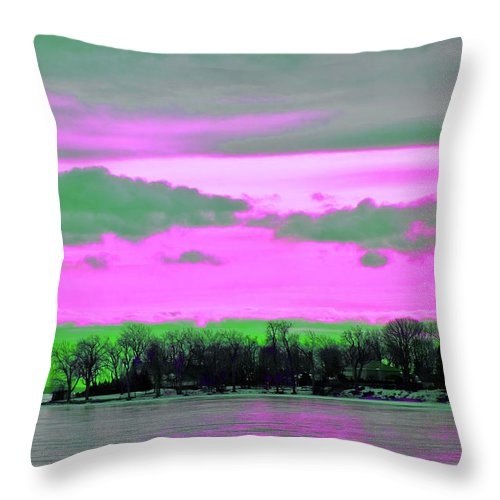 Throw Pillow featuring the photograph Rose Colore Scape by Burney Lieberman