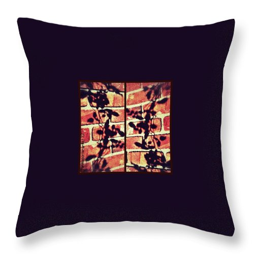 Shadow Throw Pillow featuring the photograph Rose Leaves - Shadow On Brick by Anna Porter
