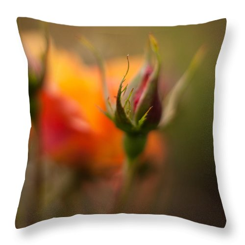 Flower Throw Pillow featuring the photograph Rosebud Details by Mike Reid