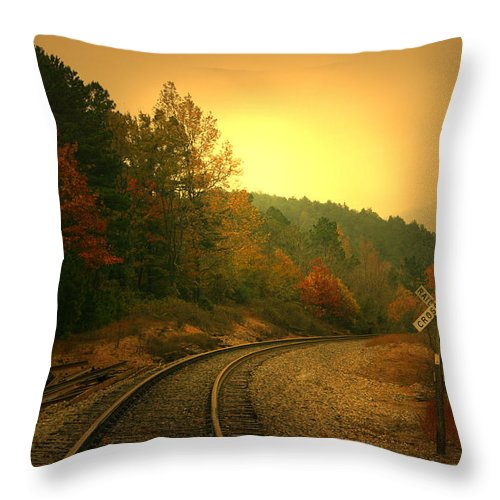 Tree Throw Pillow featuring the photograph Round The Bend by Nina Fosdick