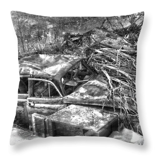 Jerry Cordeiro Throw Pillow featuring the photograph Routes In Roots by The Artist Project