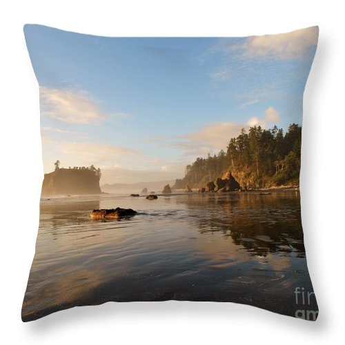 Ruby Beach Throw Pillow featuring the photograph Ruby Beach At Low Tide by Frank Larkin