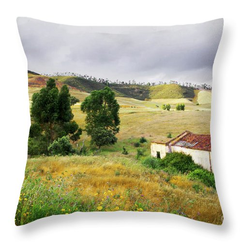 Calm Throw Pillow featuring the photograph Ruin In Countryside by Carlos Caetano