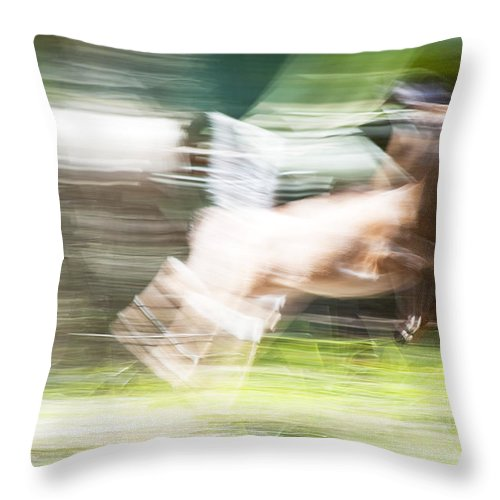 Wildlife Throw Pillow featuring the photograph Running Deer by Kenneth Albin