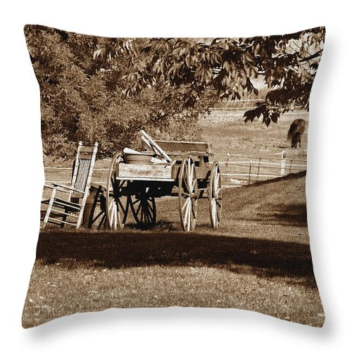 Country Throw Pillow featuring the photograph Rural Yard Decor - Has Character by Janice Adomeit