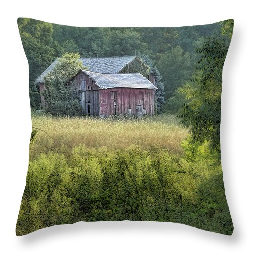 Architecture Throw Pillow featuring the photograph Rustic Barn by Tom Mc Nemar