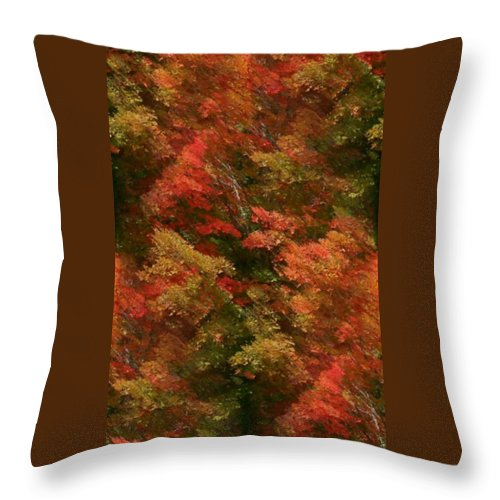 Throw Pillow featuring the photograph Rustling Autumn Leaves by Barbara S Nickerson