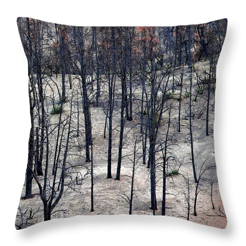 Forest Throw Pillow featuring the photograph Sad Forest by Jeff Lowe