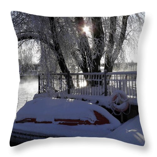 Steamy River Throw Pillow featuring the photograph Safe Winter by Sami Tiainen