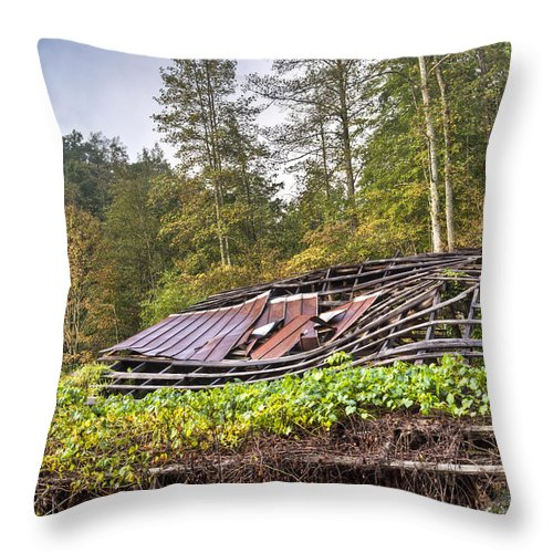 Roof Throw Pillow featuring the photograph Sagging Rooftop 1 by Douglas Barnett