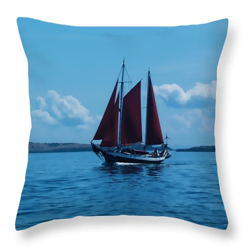 Boat Throw Pillow featuring the photograph Sails Off The San Juans by Terry Fiala