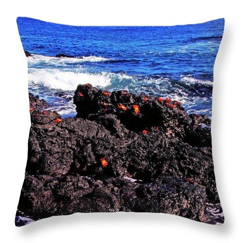 Sally Lightfoot Crabs Throw Pillow featuring the photograph Sally Lightfoot Crabs On Basalt by Thomas R Fletcher