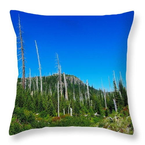 Dead Trees Throw Pillow featuring the photograph Sand Blasted Trees by Jeff Swan