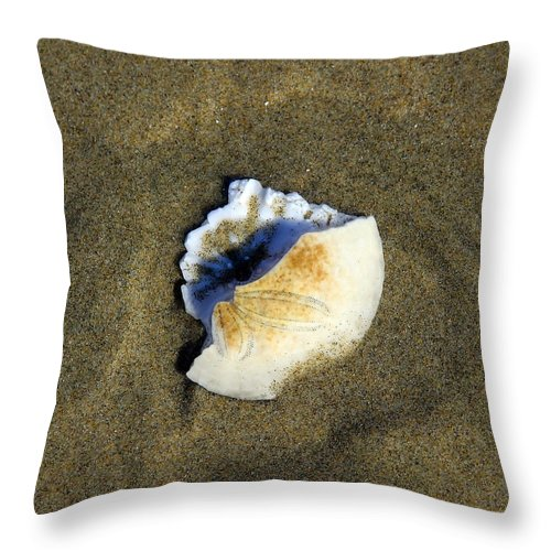 Sand Throw Pillow featuring the photograph Sand Dollar by Steve McKinzie