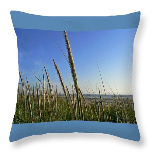 Sand Dune Grass Throw Pillow featuring the photograph Sand Dune Grasses by Pamela Patch