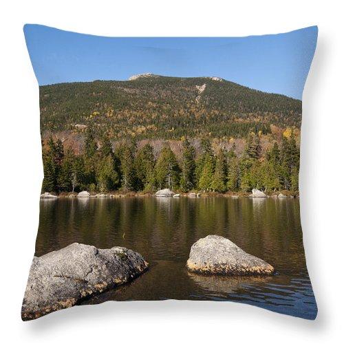 Sandy Stream Throw Pillow featuring the photograph Sandy Stream Fall by Glenn Gordon