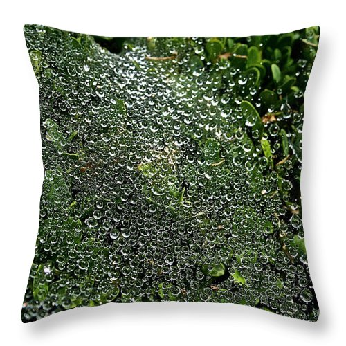 Outdoors Throw Pillow featuring the photograph Saturated Spider Web by Susan Herber