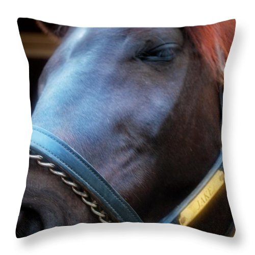Throw Pillow featuring the photograph Sc-048-12 Effects by Paulette B Wright