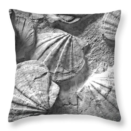 Composition Throw Pillow featuring the photograph Scallops ... by Juergen Weiss