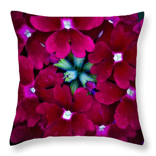 Scarlet Throw Pillow featuring the photograph Scarlet Bouquet by David Patterson