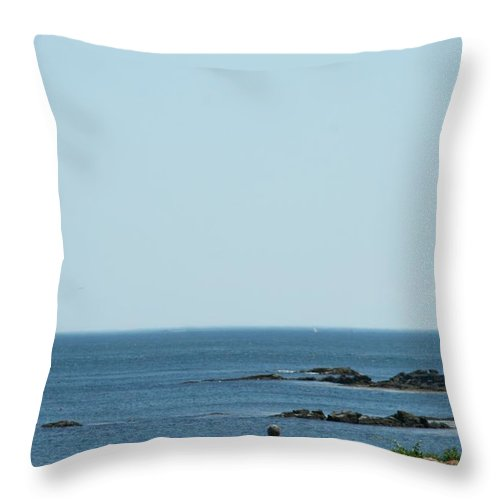 Gift Throw Pillow featuring the photograph Scenic Sea Shore by Barbara S Nickerson