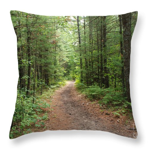 Huron National Forest Throw Pillow featuring the photograph Scenic Walk by Grace Grogan