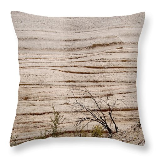 Photography Throw Pillow featuring the photograph Sculpted By Nature by Vicki Pelham
