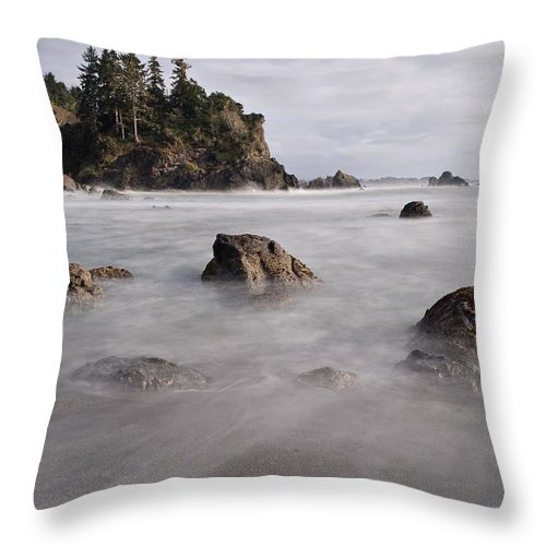 Trinidad Throw Pillow featuring the photograph Sea Rocks And Surf by Greg Nyquist